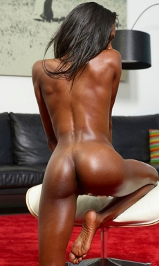 Ebony Beauty Valerie Shiny Skin
